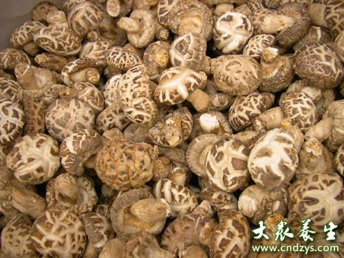 花菇与香菇的区别